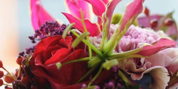 theater van de bloem o8h6vqjblmp89ohcr13ewky9rgfnqcmxz0hj713vzs - Bloemen